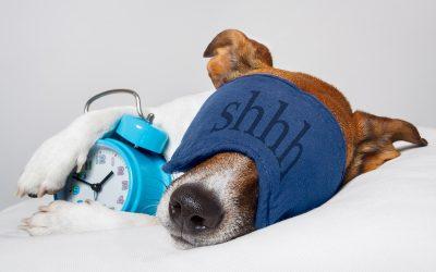 Tips for More Restful Sleep