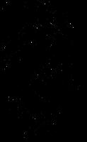 logo black 55h