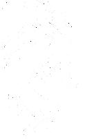 logo 55h